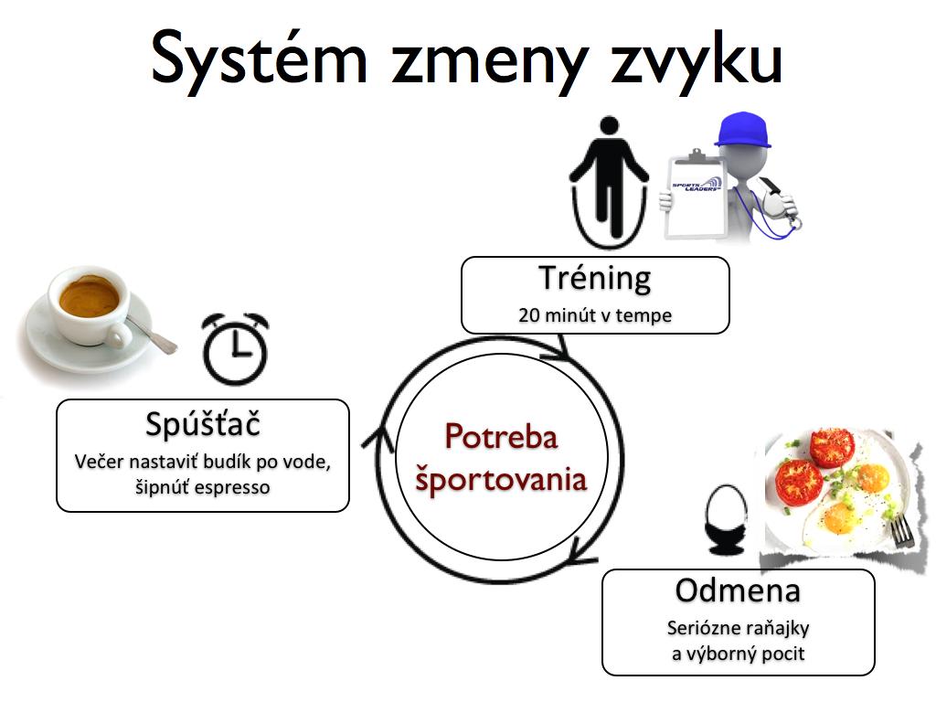 System zmeny navyku.011