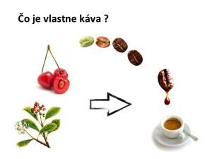 Co je vlastne kava