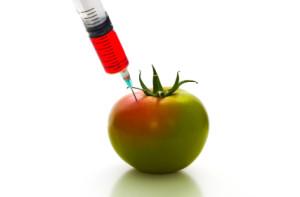 Genetická modifikácia