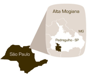 Alta Moggiana, región Specialty Coffee