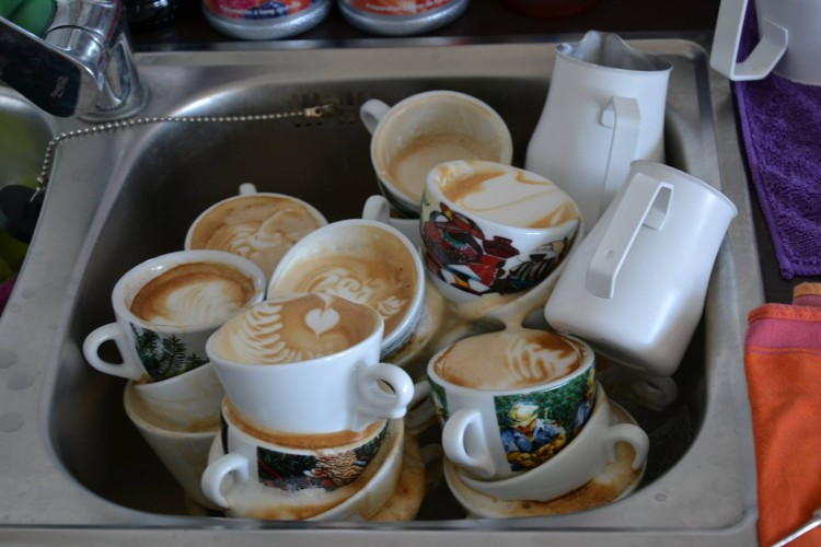 Academy Of Coffee 3
