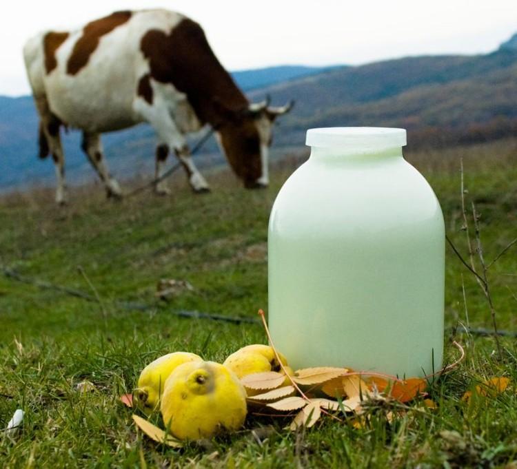 Kravske mlieko