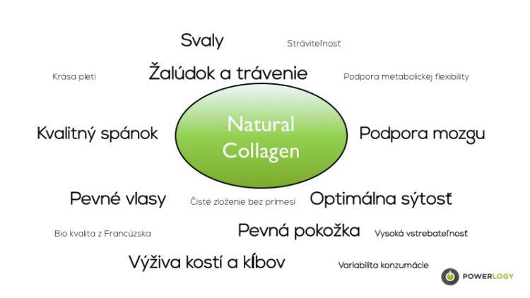 collagen-protein